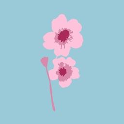 Cherry-Blossom Bakery