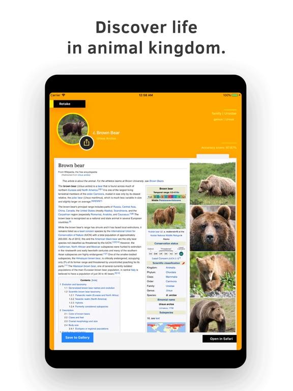 Animal Identifier. screenshot 7