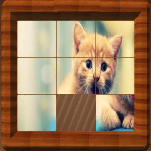 Sliding Puzzle : Tile Puzzle