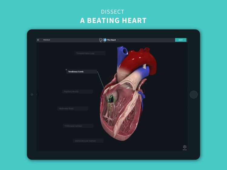 Complete Anatomy 2022 screenshot-6
