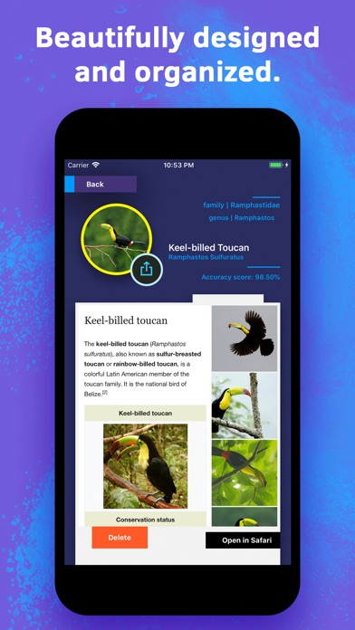 Bird Identification screenshot 5