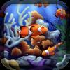 Aquarium HD - Raj Kumar Shaw