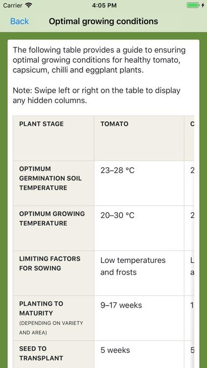 Solanaceae Fruit Field Guide