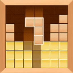 Wood Brick Puzzle