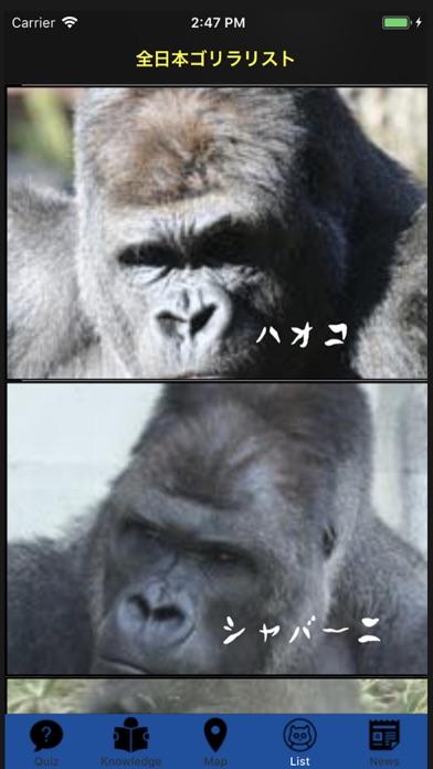 Gorilla Gorilla Gorilla screenshot 7