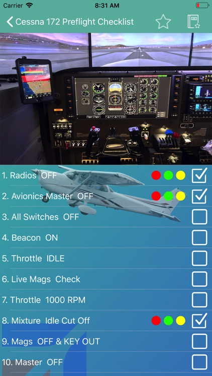 Cessna 172 Preflight Checklist screenshot-1