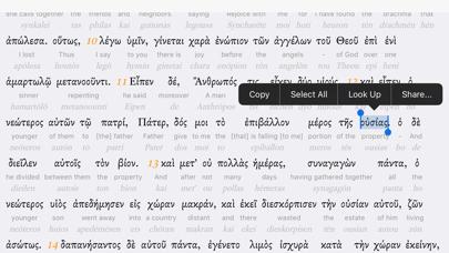Interlinear BibleScreenshot of 4
