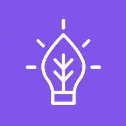 모야모 (moyamo) - 꽃, 나무, 식물이름 찾기