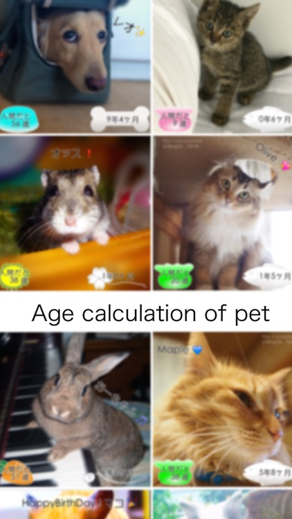 Pets Age screenshot-0