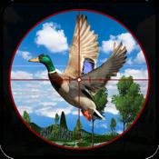 サファリジャングルの鳥の狩猟3D