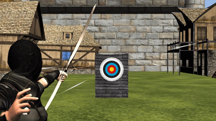 Archery Training Match screenshot-3