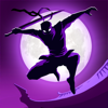 Fansipan Limited - Shadow Knight Premium Fighting  arte