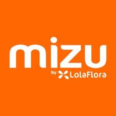 Mizu – Gift & Flower Delivery