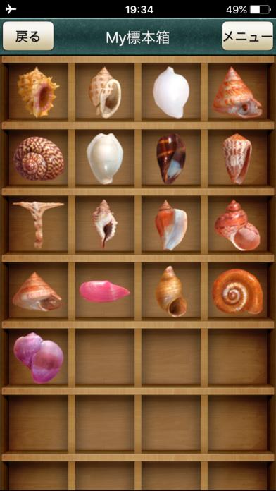 ザ・図鑑 貝殻100種のおすすめ画像4