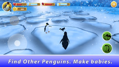 Penguin Family Simulator screenshot 2