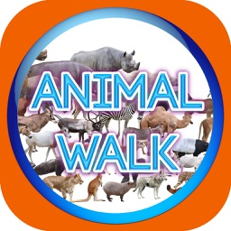 Animal Walk Touch
