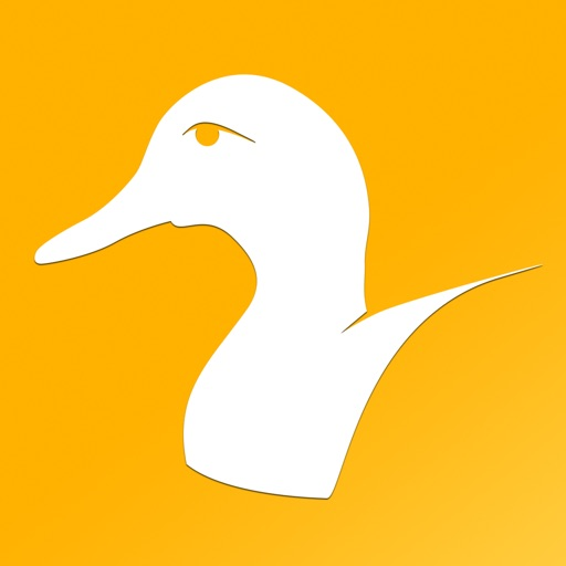 Duck Species: Types of Duck