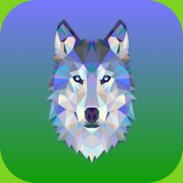 Wolf-Runner