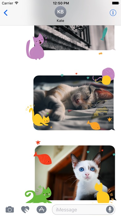 Animated Cute Cat Stickers