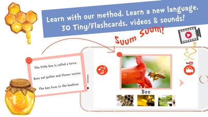 Screenshot #7 for Sami Tiny FlashCards Animals 6 languages kids apps