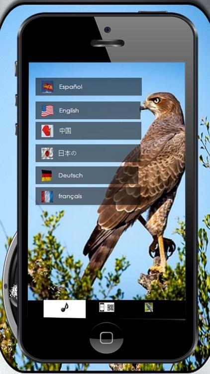Bird song Silvestes screenshot-3