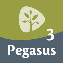 Pegasus 3 woordentrainer Latijn