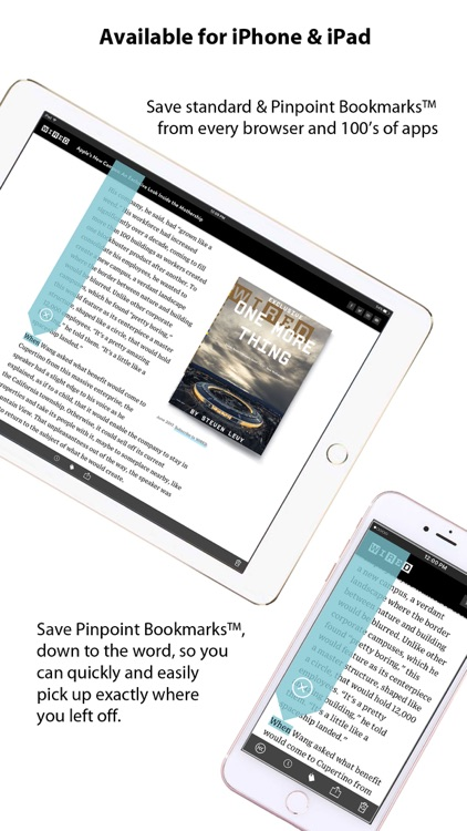 Pinpoint Bookmarking