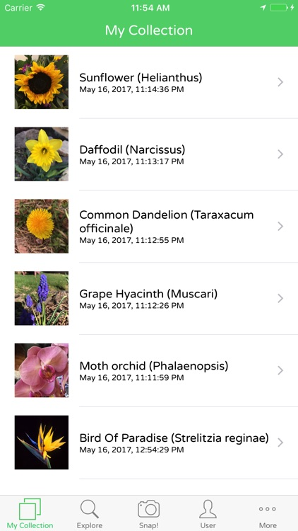 PlantSnap Plant Identification