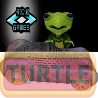 Codes for TURTLE Hack