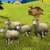Sheep Dog : Trained Herding Dog Simulator