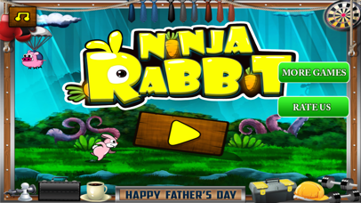 Ninja Rabbit Pro screenshot 2