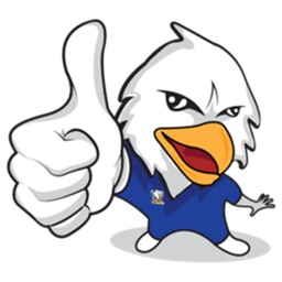 Air Force Bald Eagle Sticker