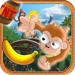 Jungle Monkey 2