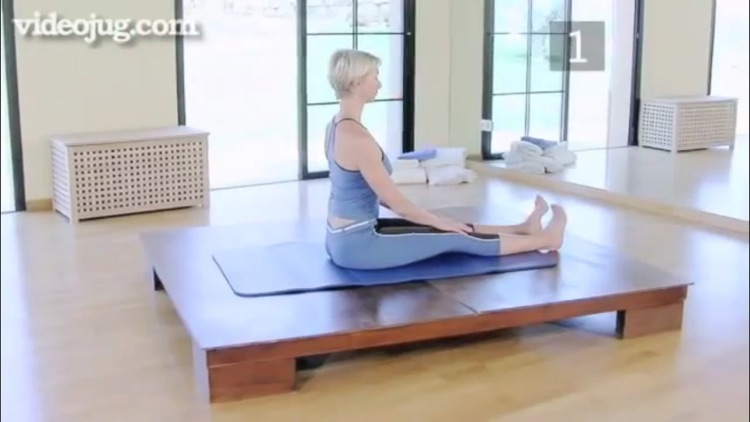 Pilates Genius screenshot-3
