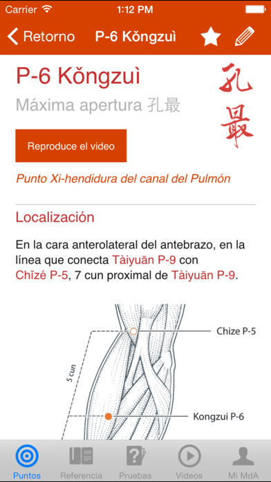 Un Manual de Acupuntura (A Manual of Acupuncture) Screenshot