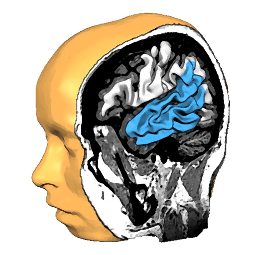 Brain Tutor 3D iOS App
