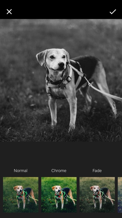 WM : Add Watermark to Your Photos screenshot-3