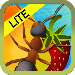 Smash Ants - Fun Counting Game For Kids LITE