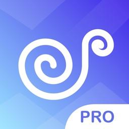 Music Player Pro- Play Music & Music Visualization