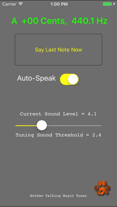 Talking Tuner iPhone