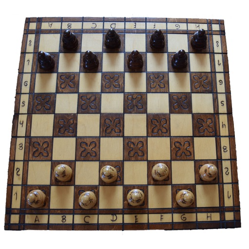 Checkers Expert