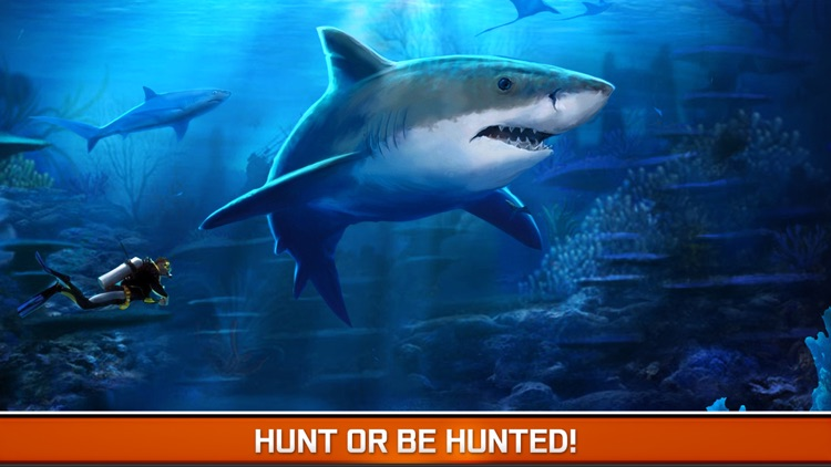 Angry Fish Hunting - Sea Shark Spear-fishing Game screenshot-3