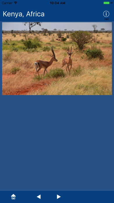 Kenya, Africa screenshot 3