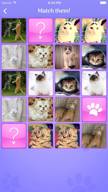 Cute Cats Memory Match Game