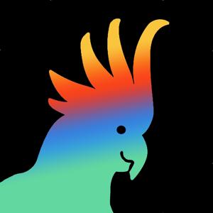 Rasa Music Visualizer app