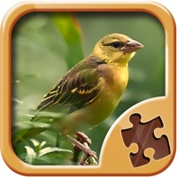 Codes for Birds Jigsaw Puzzles - Amazing Logical Game Hack
