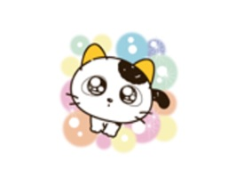 Add some funny cat with lovely yellow-ears stickers to your message when you want to send a personalized greeting