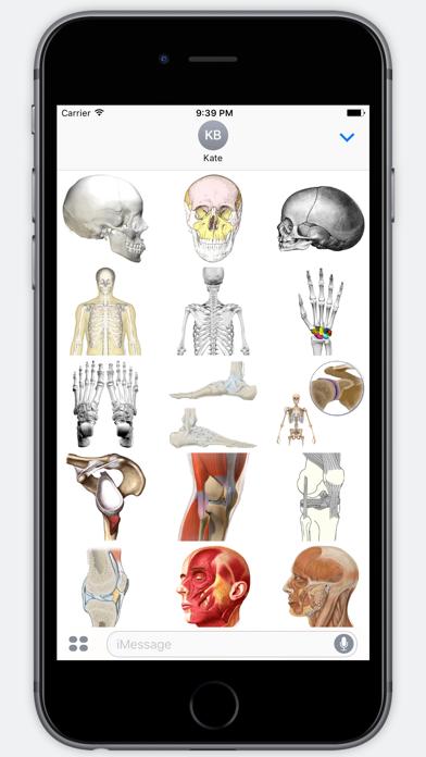 Screenshot #2 pour Anatomy Stickers