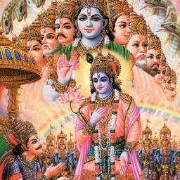 Mahabharata vol 8