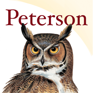 Peterson Bird Identifier & Field Guide app